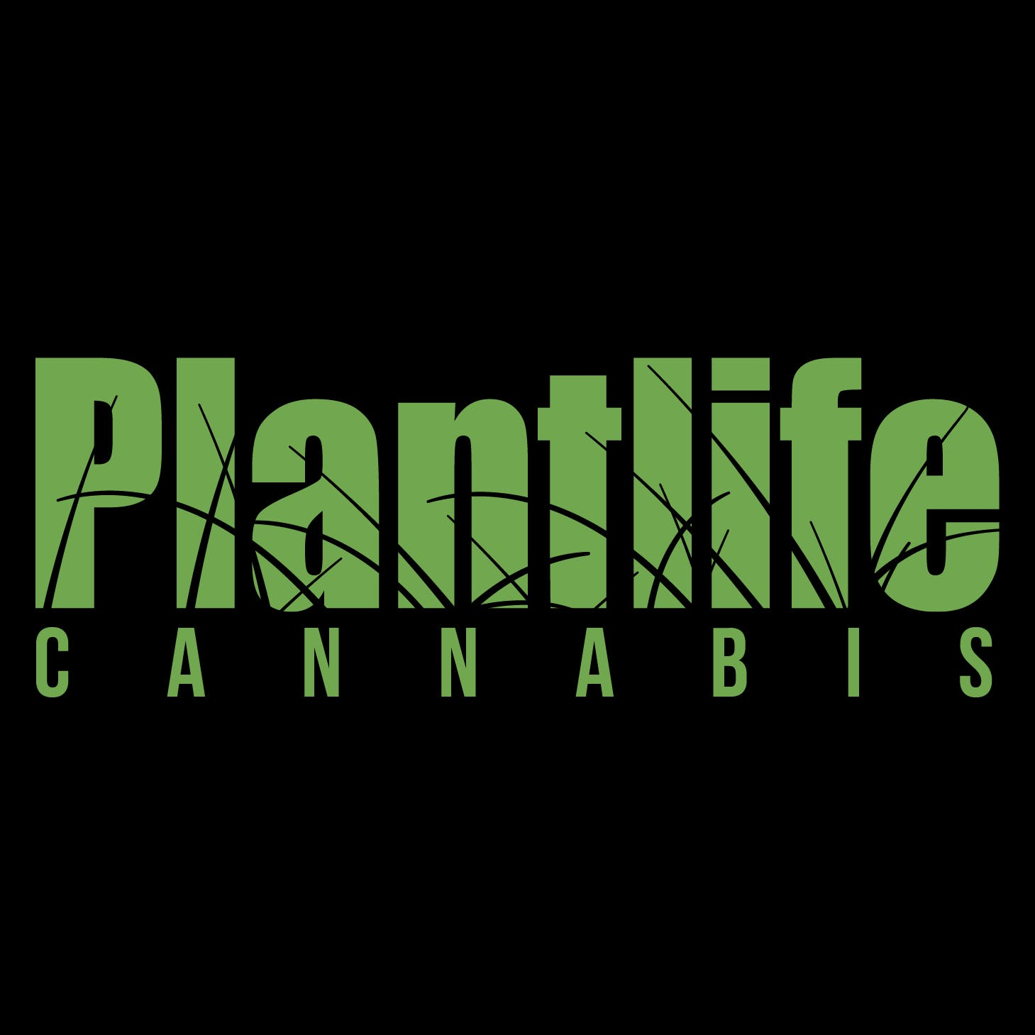 Plantlife Cannabis