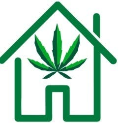 Cannabis House (59A Ave)