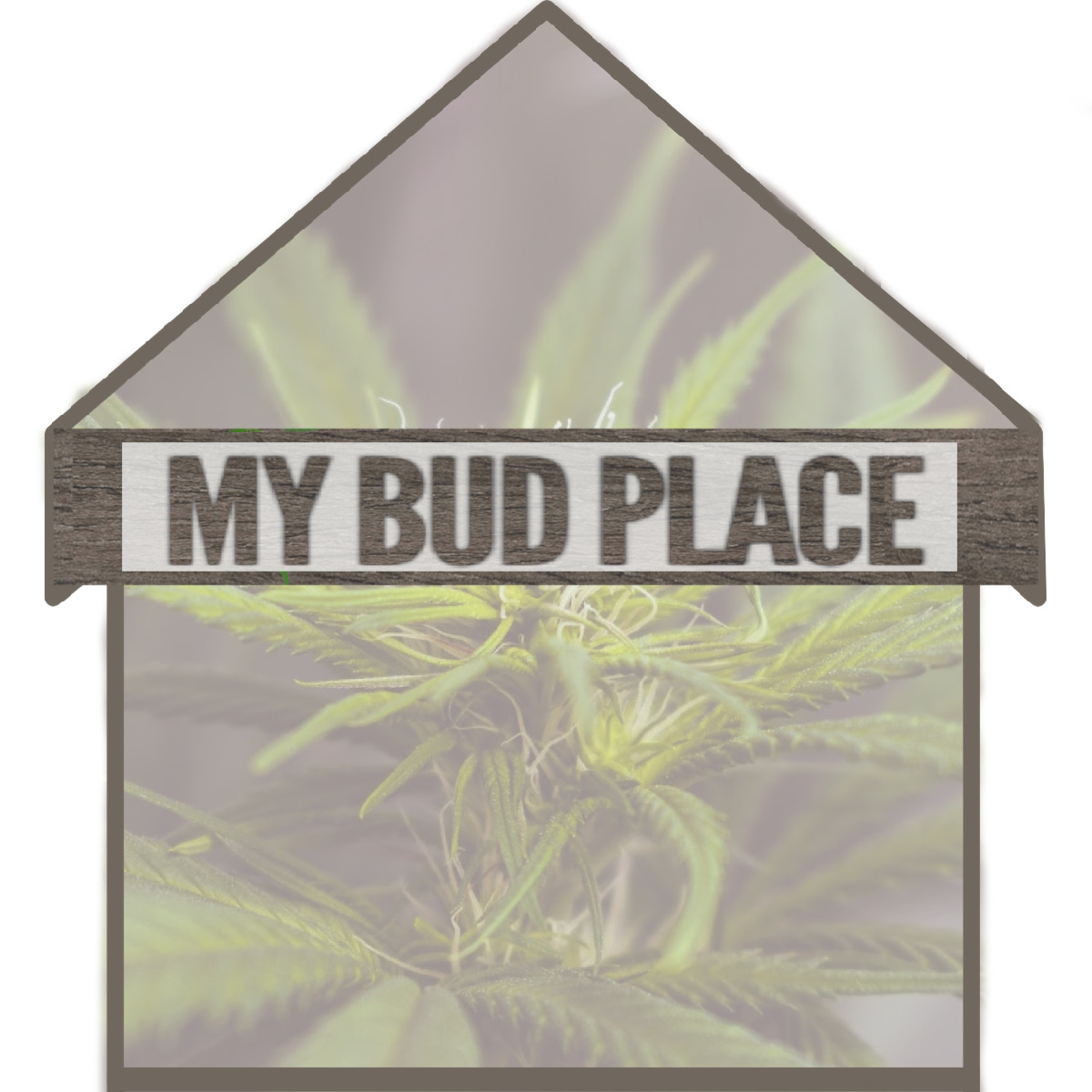 My Bud Place