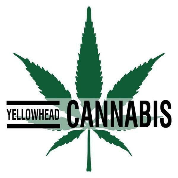 Yellowhead Cannabis